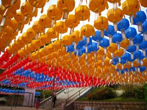 수덕사 경내에는 국화꽃과 연등이 화려하다. 특히 근역성보관에서 대웅전으로 오르는 길에는 '대웅전 건립 700주년'이라는 연등글씨가 눈길을 끈다.
