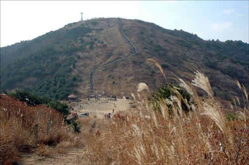 무학산 멀리 철탑이 있는 곳이 해발 761.4미터의 무학산 정상이고, 365 건강계단이 보이며, 아래 평평한 곳은 서마지기터다.