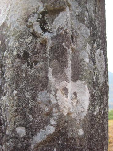 망주석에 표현된 동물 망주석에 마치 도마뱀처럼 보이는 것이 새겨져 있다. 발가락과 고리 부분 등 도마뱀과 같다.