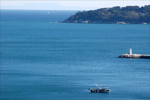 지심도와 대마도 지세포항에서 고기잡이 하는 배. 지심도와 멀리 대마도가 보인다