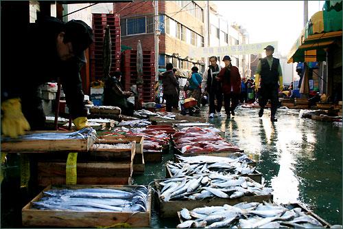 싱싱한 생선이 넘쳐나는 '전남 여수 중앙동 구판장' 풍경