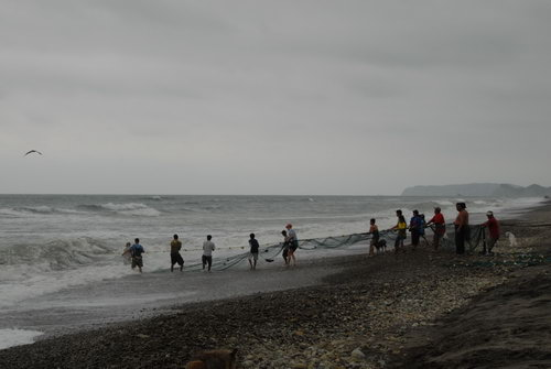태평양의 낚시  아직도 에쿠아도르에서는 마을 사람들이 함께 그물을 이용하여 생선을 잡는 경우가 많다.