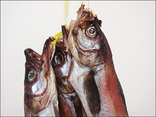명태조림 예나 지금이나 명태는 수많은 사람들이 즐겨먹는 바다 생선이다