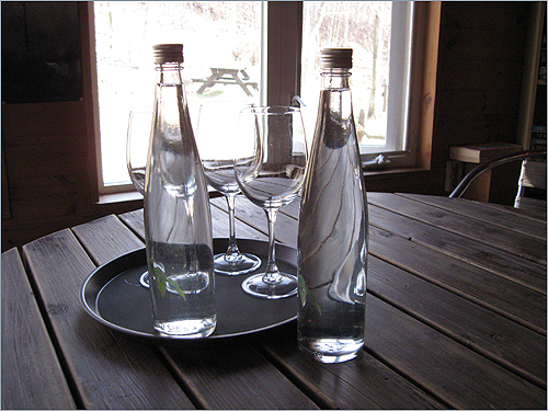 자작나무 수액 유리알처럼 맑은 자작나무 수액(500ml 1만 원)이 눈길을 확 휘어잡는다