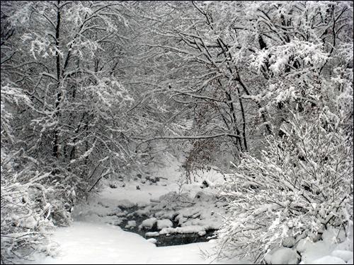 계곡은 아직 겨울 얼음 깔린 계곡에 눈이 또 내렸습니다