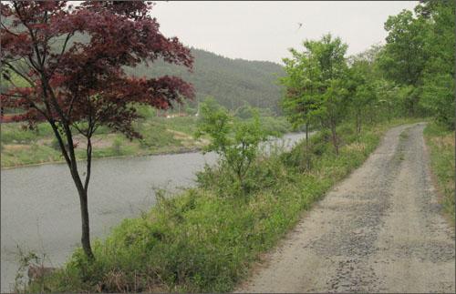 섬진강 따라 난 정겨운 오솔길. 강 풍경은 물론 강 건너 17번 국도와 증기기관차가 달리는 철길까지 한 눈에 들어온다.