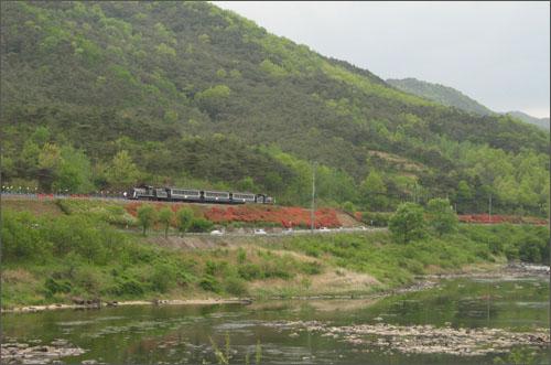 섬진강변에서 옛 추억을 실어나르는 증기기관차. 그 뒤에는 관광객들이 강변 따라 타고 온 철로자전거가 매달려 있다.