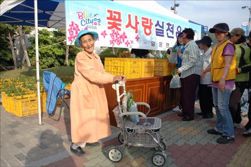 꽃 사랑 한 할머니가 꽃 한 봉지를 받아 손수레에 담아 웃으며 가고 있다