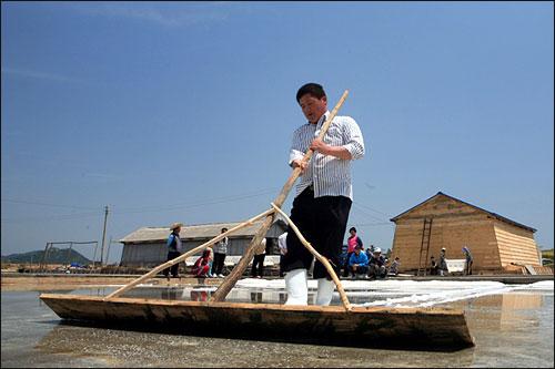 토판 염전으로 개조한 후 첫 소금(천일염)을 걷는 박성춘씨. '토판'은 20여 년 전 그의 아버지가 소금을 생산했던 방식이다.