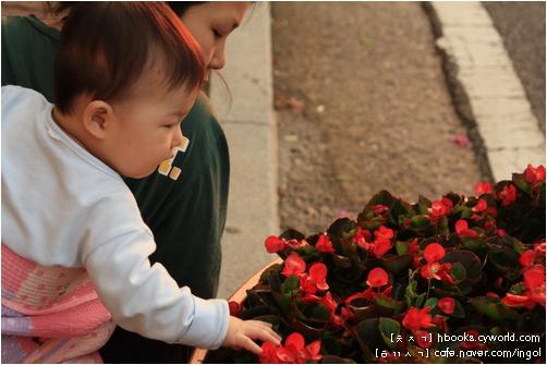 예쁘기에 바라보는 꽃이라기보다 있는 그대로가 좋아서 바라보고, 살며시 쓰다듬기도 하는 꽃입니다.