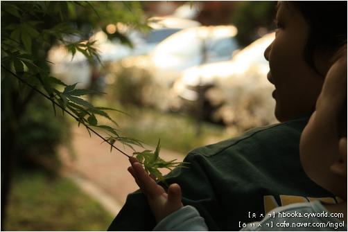 엄마가 꽃잎과 나뭇잎을 잡아당기지 말고 살짝 만져 보라고 하니, 아기는 이 말을 알아들었는지 손바닥으로 살짝 대어 보기만 합니다.