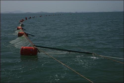 임자도와 재원도와 증도 사이앞 바다는 신안 최고의 병어어장이다. 병어잡이 그물 너머로 보이는 섬이 임자도와 재원도다.