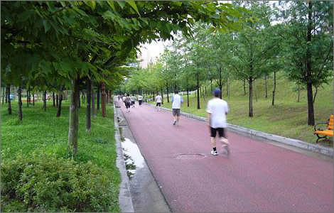 걷기는 대표적인 유산소 운동으로 남녀노소 누구나 쉽게 할 수 있습니다.