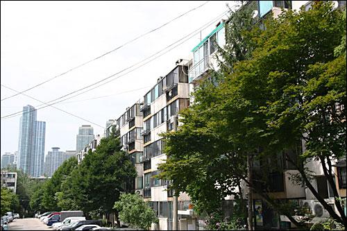 서울 강남구 개포동 주공1단지 아파트 전경. 서울 강남 지역에서 재건축이 이뤄질 가능성이 가장 높은 이 아파트에 돈이 몰리고 있다.