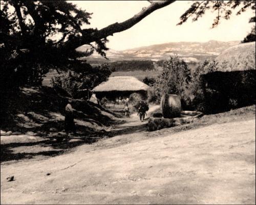 울산 동구 일산동의 과거 모습. 현대중공업과 주택가가 들어섰다.