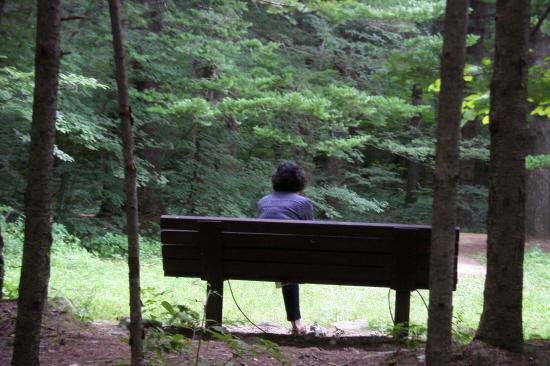 인간의 탐심은 순간이다. 이 보이지 않는 탐심은 숨겨도 금방 틔어 나온다. 빈 의자에 아내가 앉아 버렸다.