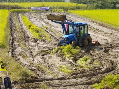 진흙탕으로 변한 논 1000여평의 논은 20여 분만에 진흙탕으로 변했다.