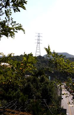 인천시 부평구 십정동 백운초등학교 인근에 설치된 송전탑