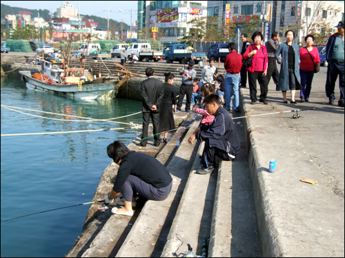 태안 신진항, 숭어낚시꾼들로 북새통 주말을 맞아 태안 신진항에는 최근 출몰한 숭어를 잡기 위해 낚시꾼들이 몰려들었다.
