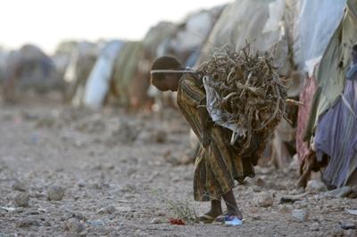 난민촌에서 땔감용 나무를 나르는 소녀.  소말리아 남부 바쿨지역의 난민촌에서 어린 소녀가 땔감용 나무를 나르고 있다. 가뭄이 계속되는 이 곳에서 난민들은 구호식량에 의지해 하루 하루를 연명한다.