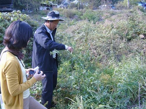 환경운동연합 정우규 의장님의 설명 선바위 부근 생태조사를 하며 설명하고 계시는 정우규 의장님