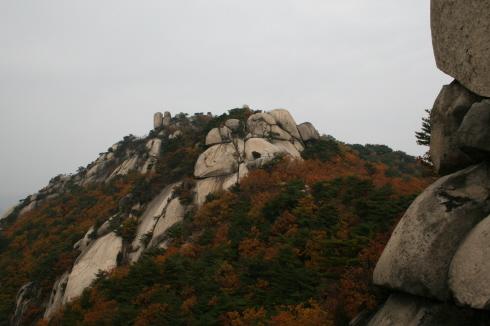 화강암 큰바위들과 단풍의 하모니, 수락산의 묘한 조화 정말 큰 바위들도 많았고 소박한 단풍들도 철철 넘쳤다.