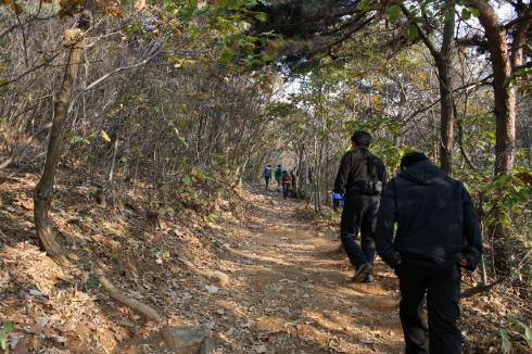 햇살이 내리쬐이고 있는 예봉산 등산로 몇몇 팀들이 이른 아침부터 산행을 시작하고 있다.