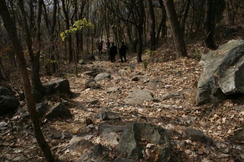 하산길로 선택한 계곡길 울퉁불퉁한 계곡길 등산로가 그리 편하지는 않았다.