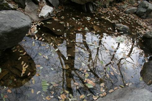 계곡길로 하산하던 중에 만난 작은 호수 계곡물이 흐르다가 모여있는 작은 웅덩이를 발견했다.