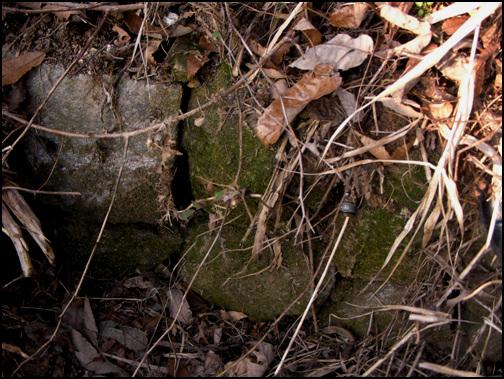 돌 돌의 생김새로 보아 일반돌은 아니다. 원터에서 나온 돌을 이용한 하천의 둑