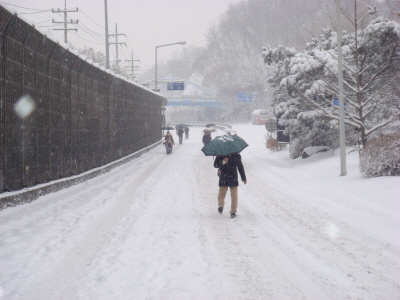 2010년 1월 4일 출근길 풍경-5 출근을 위해 터널을 걸어나온 시민들