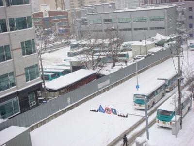 2010년 1월 4일 출근길 풍경-7 경기도 성남시 중원구의 한 버스회사 종점 풍경 - 오전 9시가 넘어서도 대설로 인하여 차량운행을 못하고 있다.
