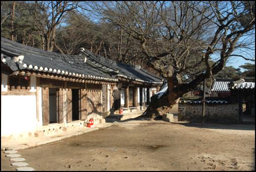 재실 오래묵은 고목과 조화를 이루는 효종대왕릉의 재실. 앞쪽에 보이는 건물이 제기고이며, 뒤편에 건물이 제관들이 쉬는 재실이다.