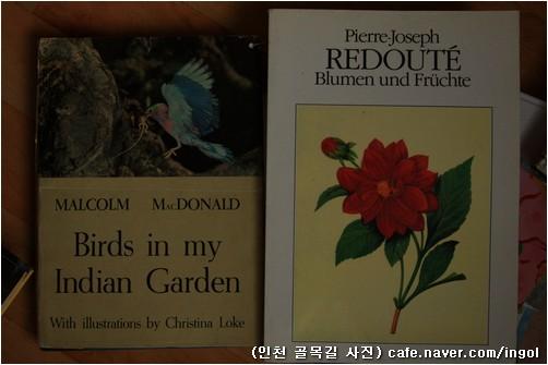 사진으로 빚은 새 도감 하나와, 꽃과 열매를 그림으로 담은 책 하나.