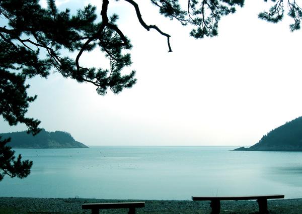 미라리 해안 미라리상록수림에서 해안에 이르며 펼쳐지는 아름다운 바다 풍경