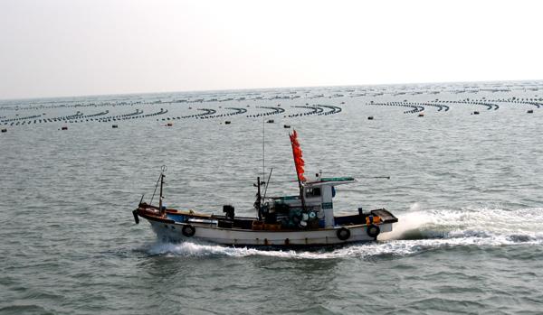 어선과 포말 힘찬 포말을 감아돌리며 소안 앞바다 양식장을 가로지르는 어선의 풍경