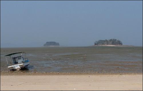물 빠진 함해만. 함해만은 우리나라에서 가장 먼저 습지보호구역으로 지정됐다.