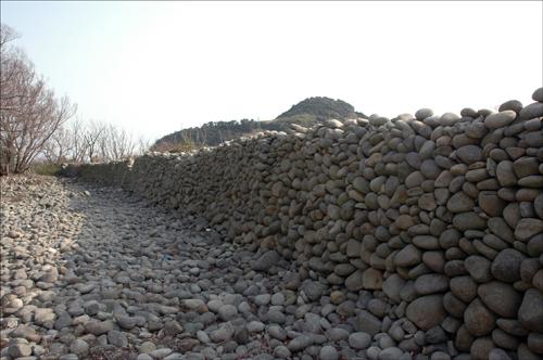 몽돌 담장길 몽돌 담장길 안쪽 모습이다.