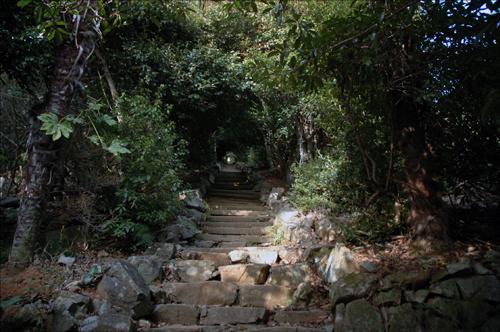 천국의 문 1백여 미터의 가파른 동백꽃 경사길은 하늘과 맞닿아 있다. 한 계단 한 계단 오르며 인생의 뒤안길을 돌아보고 싶은 생각이 든다.