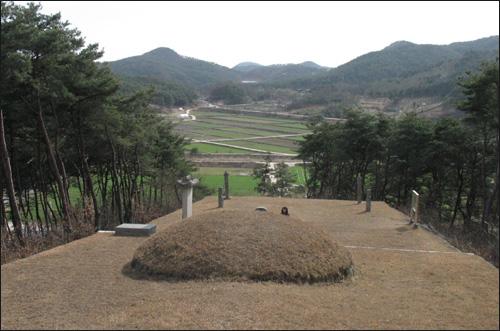 조선 중기 문인 박수량의 묘 전경. 앞으로 황룡 들녘이 펼쳐진다.