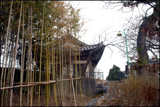 임이정 임이정을 오르는 계단 주변에는 대나무를 심었다.