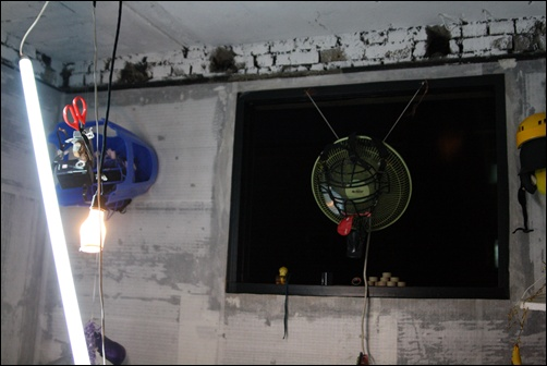 에피소드3 선풍기는 남성의 주체가 뿜어대는 힘을 상징한다. 선풍기의 바람이 세 질수록 대상인 식물들은 자지러진다.(김홍빈)