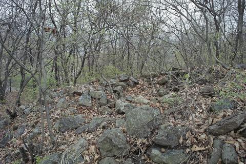성태산성 유적지 성태산 정산 부근에 굴러다니는 성벽의 돌들. 그냥 돌이 많은 곳 아니야? 라고 생각하신다면 오산. 이 돌들로 성벽을 쌓았다고 한다.