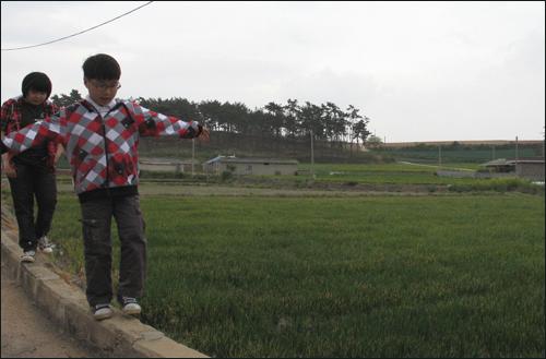 어버이날을 맞아 외할머니 댁을 찾은 윤창숙씨의 자녀들이 집밖 논가에서 놀고 있다.