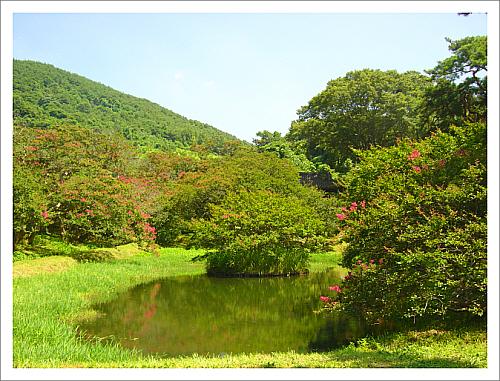 담양 명옥헌원림 산에서 흘러내린 계류를 이용하여 명옥헌 뒤에 작은 연못, 앞에 큰 연못을 만들고 주변에 배롱나무를 심어 조경하였다. 자연과 인공이 절묘한 조화를 이뤄 우리나라 원림의 표본이 되었다