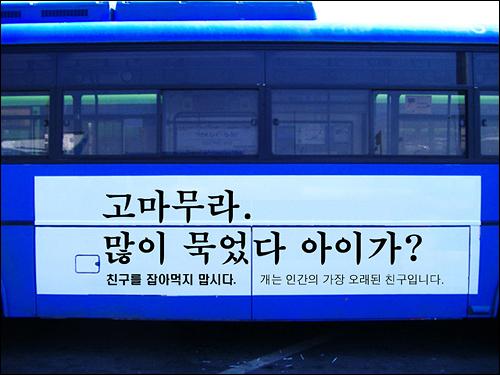 7월 18일부터 국제광고제 수상경력으로 유명한 광고인 이제석씨가 디자인한 광고를 부착한 버스가 시내를 운행한다.