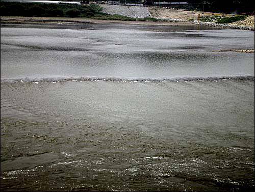 무리한 준설작업으로 남한강 중간에 턱이 생겨 물이 빙빙 돌고 있다.