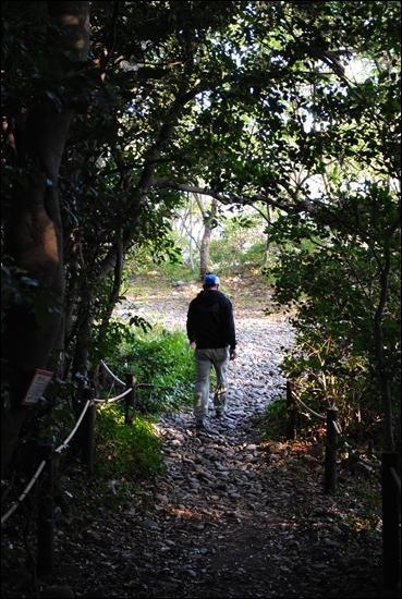 구계등 언덕 위, 숲 속 산책로