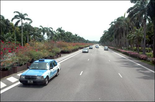 고속도로 싱가포르 고속도로 주변에 설치된 대형화분. 비상시에 이 화분을 치우면 비행기 활주로로 이용할 수 있다고 한다.