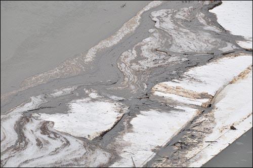 흡착포를 이용하여 기름제거를 하고 있지만 유출된 기름이 금강을 뒤덮고 있다.